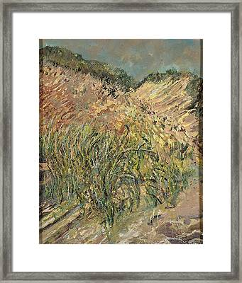 Cape Cod 1 Framed Print by Patricia Trudeau