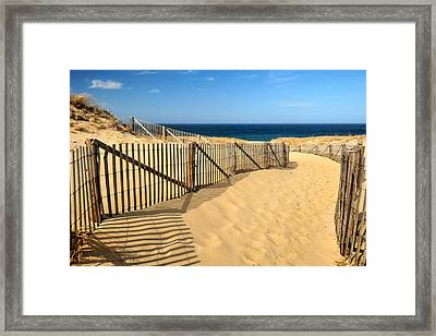 Framed Print featuring the photograph Cape Cod Beach by Mitchell R Grosky
