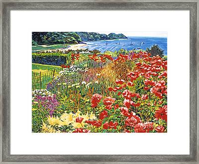 Cape Cod Ocean Garden Framed Print by David Lloyd Glover