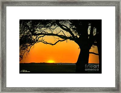 Cape Fear Sunset 2 Framed Print by Phil Mancuso