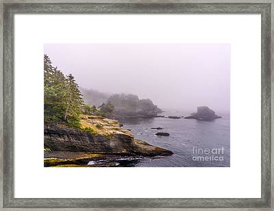 Cape Flattery Framed Print