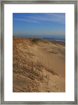 Cape Hatteras Dunes-outer Banks North Carolina Framed Print