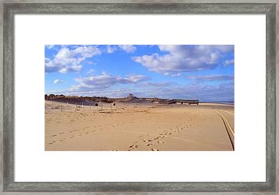 Cape Henlopen 12 Framed Print by Cynthia Harvey