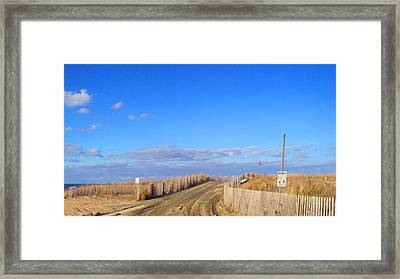 Cape Henlopen 13 Framed Print by Cynthia Harvey