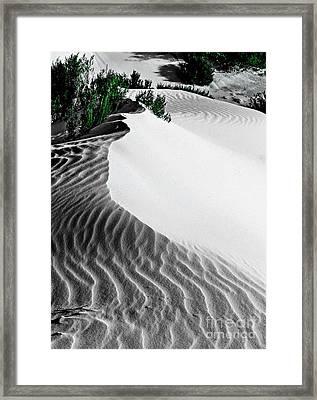 Cape Le Grande Sand Dune Framed Print