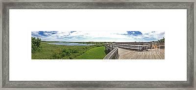 Cape May Hawk Watch Framed Print by Tom Gari Gallery-Three-Photography