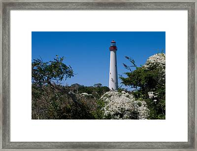 Framed Print featuring the photograph Cape May Lighthouse by Greg Graham