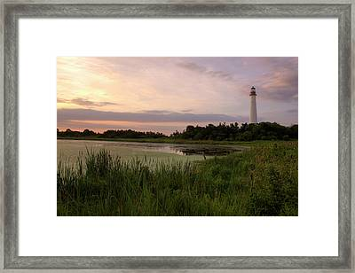 Cape May Lighthouse II Framed Print by Tom Singleton