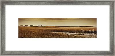 Cape Romaine Framed Print by Bruce Bain