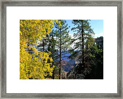 Cape Royal Grand Canyon Framed Print