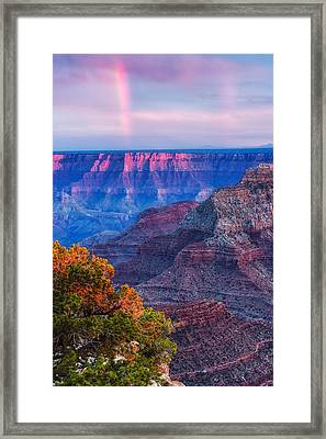 Cape Royal Rainbow Over The South Rim - Grand Canyon National Park Arizona Framed Print