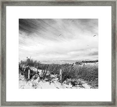Cape Shore Framed Print
