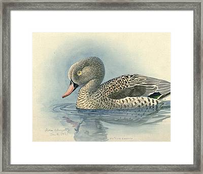 Cape Teal Framed Print