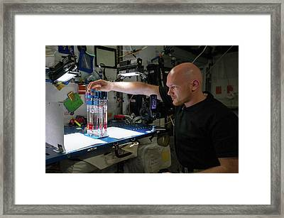 Capillary Flow Experiment In Space Framed Print