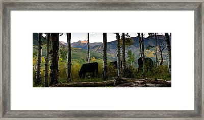 Capital Peak Framed Print