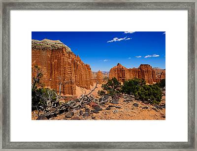 Capital Reef Framed Print by Donald Fink
