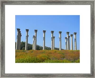 Capitol Post Apocalypse Framed Print by Christopher Walsh