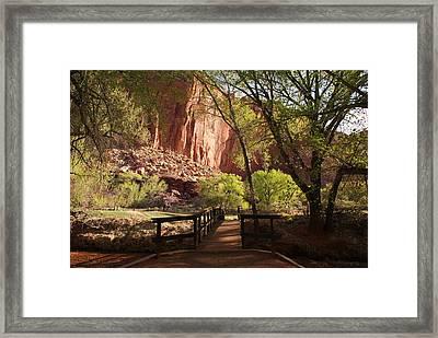 Capitol Reef Bridge Framed Print by Michael J Bauer
