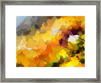 Capixart Abstract 19 Framed Print