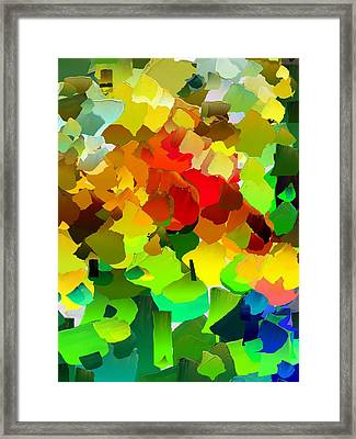 Capixart Abstract 28 Framed Print