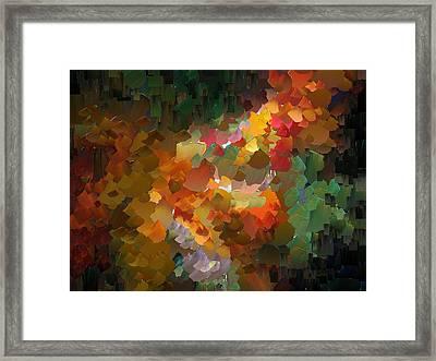 Capixart Abstract 90 Framed Print