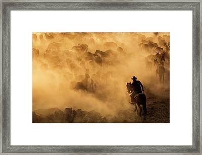 Cappadocia Wild Horses Framed Print