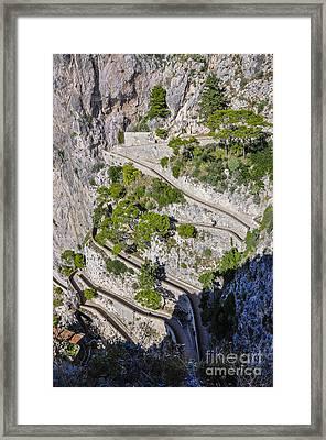 Capri Trail Framed Print