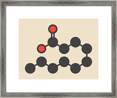 Capric Acid Molecule Framed Print by Molekuul