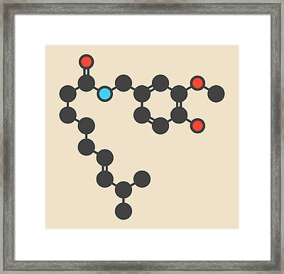 Capsaicin Chili Pepper Molecule Framed Print