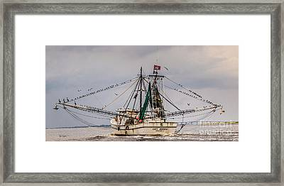 Captain Andrew Framed Print