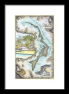 Striped Marlin Drawings Framed Prints