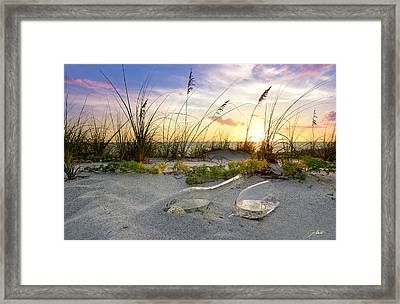 Captiva Sunset Framed Print by Jon Neidert