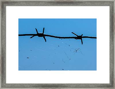 Captivity - Featured 3 Framed Print