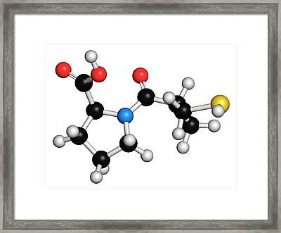 Captopril High Blood Pressure Drug Framed Print by Molekuul