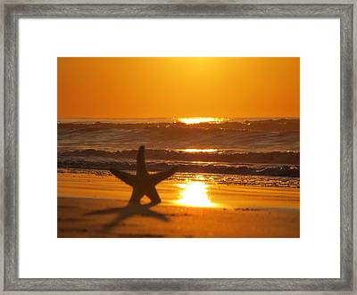 Capture Beauty Framed Print