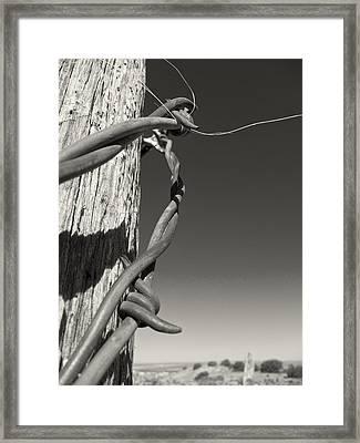 Capture Framed Print by Mary Lee Dereske
