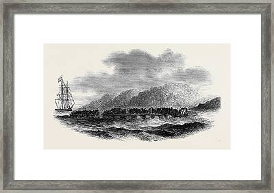 Capture Of A Slave-vessel Framed Print by English School