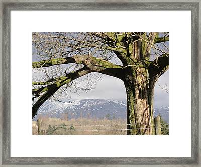 Framed Print featuring the photograph Capture The Moment by Tiffany Erdman