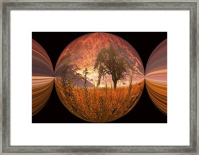 Captured Flame Framed Print by Debra and Dave Vanderlaan
