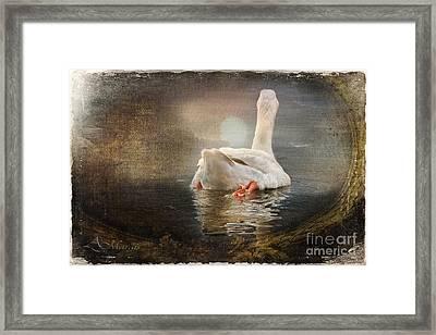 Captured Memories Xii Framed Print by Adelita Rog