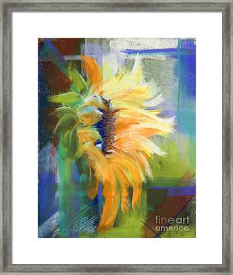 Captured Sunlight Framed Print by Tracy L Teeter