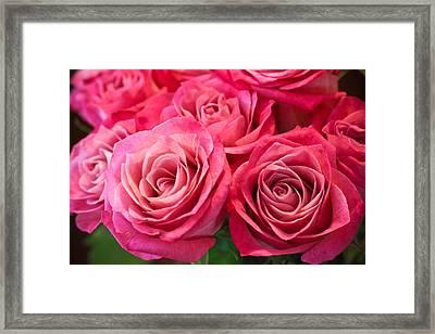 Capturing A Bouquet Framed Print