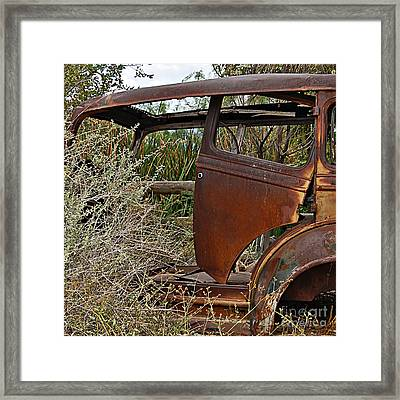 Framed Print featuring the photograph Car-cass by Lee Craig