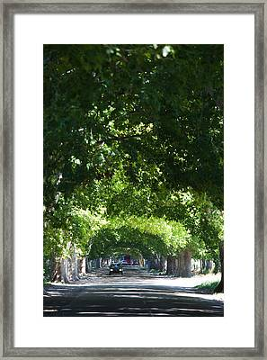Car On A Country Road, Lujan De Cuyo Framed Print