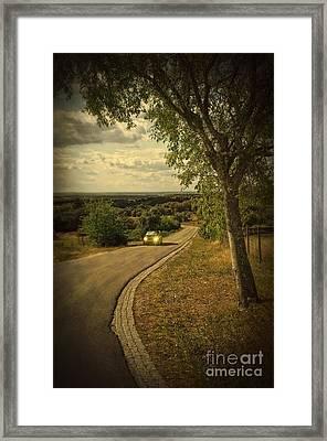 Car On Road Framed Print by Carlos Caetano