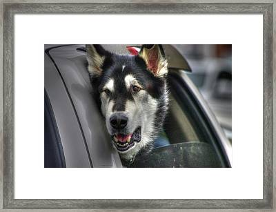 Car Ride Framed Print by Dennis Baswell