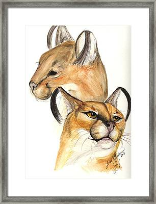 Caracal Framed Print