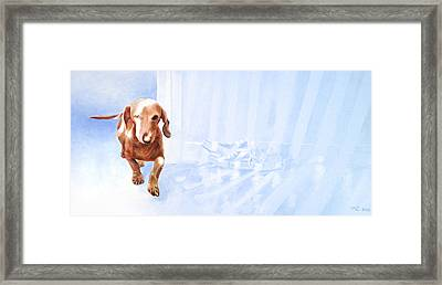 Caramel Framed Print by Kevin Hill