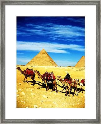 Caravan Of Camels 2 Framed Print