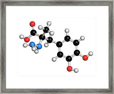 Carbidopa Parkinson's Disease Drug Framed Print